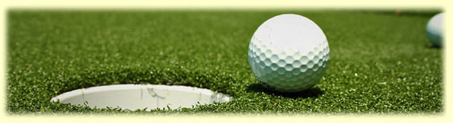 Come practic your skills with our practic putting and chipping greens.